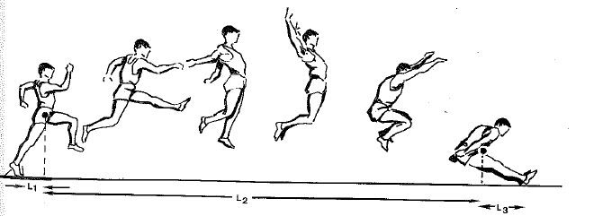 Photo of The longest jump ever made: Homo Ladonicus
