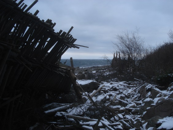 Photo of Winter in Ladonia